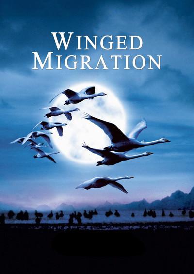 รีวิวเรื่อง WINGED MIGRATION (2003)